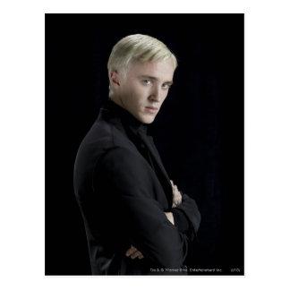 Gekruiste de Wapens van Malfoy van Draco Briefkaart