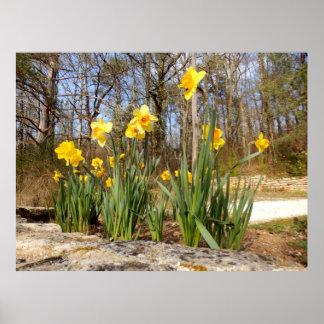 Gele narcissen bij het Poster van Pasen