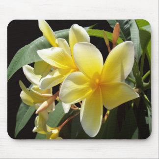 Gele Plumeria Bloemen Mousepad Muismatten