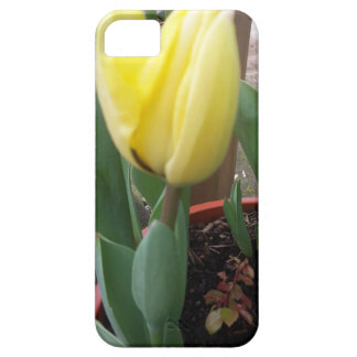 Gele tulp barely there iPhone 5 hoesje