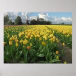 Gele Tulpen op een Gebied Holland Afdruk