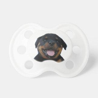 Gelukkig Mannelijk Puppy Rottweiler Baby Speentje