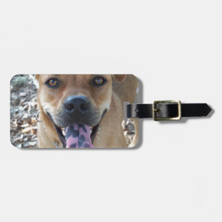 Gelukkige Bruine hond met bevlekte tong Kofferlabels