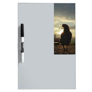 Gelukkige kip 01.3 dry erase whiteboards