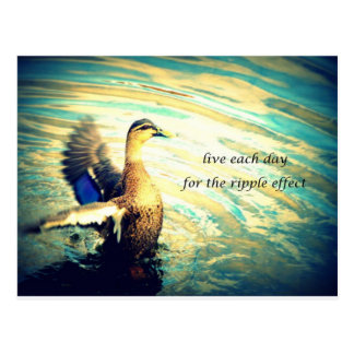 Gelukkige klappende eend in water briefkaart