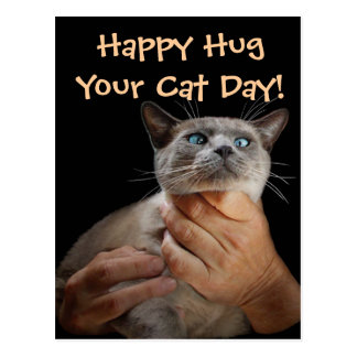 Gelukkige Omhelzing Uw Dag van de Kat! Briefkaart