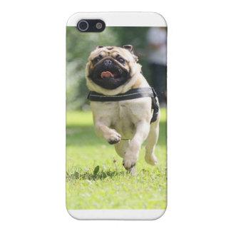 gelukkige pug iPhone 5 hoesje