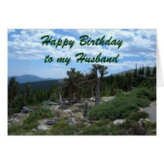 Gelukkige Verjaardag aan mijn Echtgenoot Kaart