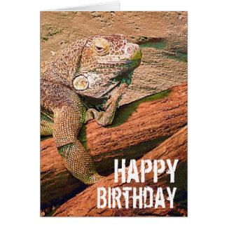 Gelukkige Verjaardag - de Luie Hagedis Chillaxing Briefkaarten 0