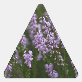 Gemeenschappelijke Heide (vulgaris Calluna) Sticker