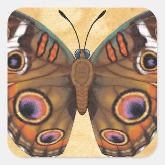 Gemeenschappelijke Vlinder Buckeye Vierkante Sticker
