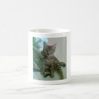 Gepersonaliseerde leuke kattenmokken koffiemok