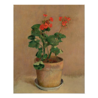Geraniums in een Pot, c.1905 (olie op canvas) Poster