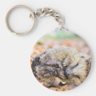 Gerolde egel die op bladeren in herfstseizoen sleutelhanger