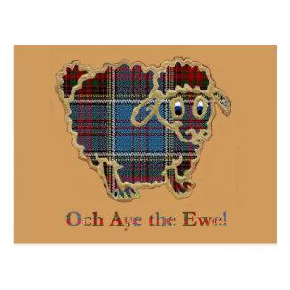 "geruite Schotse wollen stof schapen het ""Stem vóór Briefkaart"
