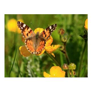 Geschilderd Dame Butterfly Briefkaart