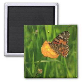 Geschilderd Dame Butterfly Magneet