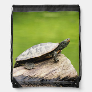Geschilderde Schildpad op een logboek Trekkoord Rugzakje