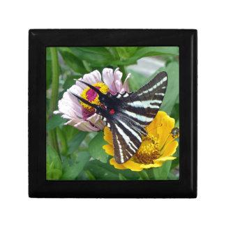 Gestreepte Swallowtail+Japanse Kever Decoratiedoosje