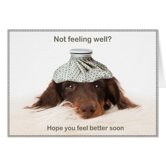Get well card with a dachshund hound dog kaart