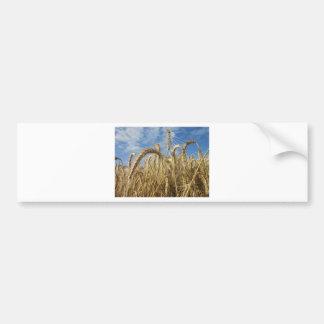 Gewassen van Graangewassen en de Hemel van de Bumpersticker