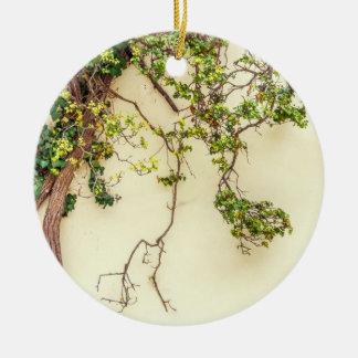 Gifsumak op een Gele Muur Rond Keramisch Ornament