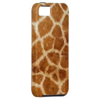 Giraf 1 de Hoesjes van het Speck