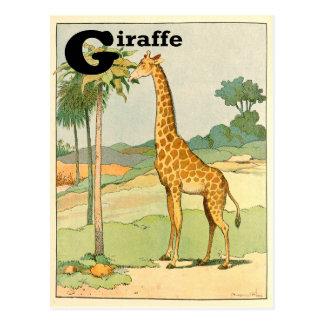 Giraf die Acacia in de Woestijn eten Briefkaart