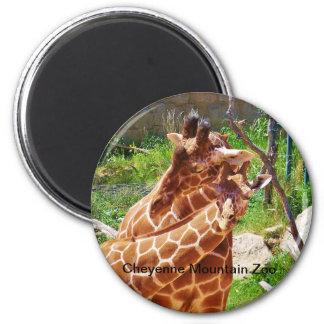 Giraffen die affectie geven magneet