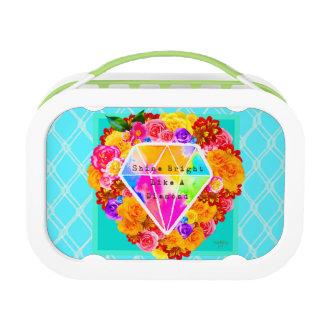 Glans Helder als een Diamant Lunchbox