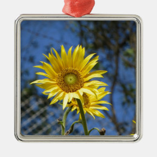 Glimlachende gelukkige producten zilverkleurig vierkant ornament