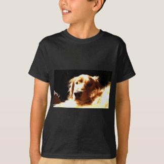 Golden retriever in Zonlicht T Shirt