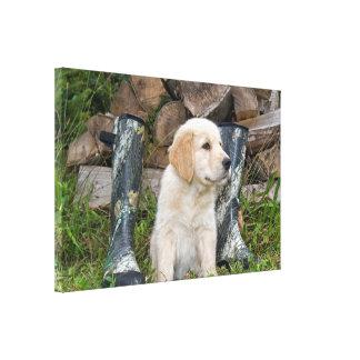 golden retriever puppy met laarzen canvas afdruk