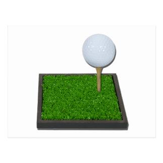 GolfBallOnTeeOnGrass102111 Briefkaart