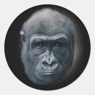 Gorilla Mijn Dromen Ronde Sticker