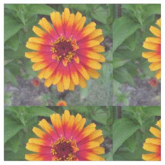 Gouden Geeloranje Zinnia Flower Stof
