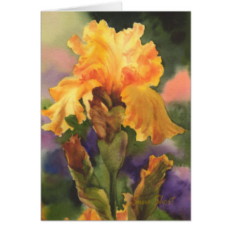Gouden Iris Briefkaarten 0