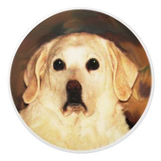 Gouden Labrador Keramische Knop