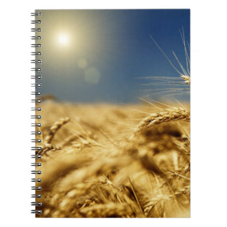 Gouden tarwe en blauwe hemel met zon ringband notitieboek