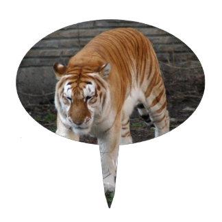 Gouden Tijger 1 van de Gestreepte kat Taart Prikkers