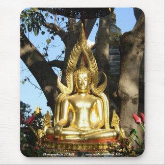 Gouden Tuin Boedha Muismat