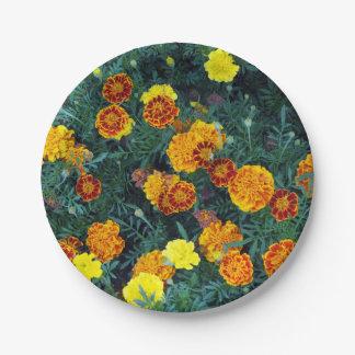 Goudsbloemen 22 papieren bordje