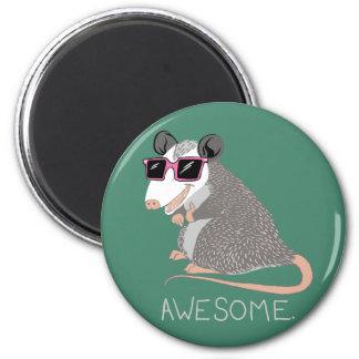 Grappig Geweldige Opossum Magneet