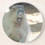 Grappig Onderzetter Capybara