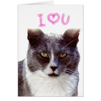 Grappig Valentijn van Uw Wenskaart van de Kat