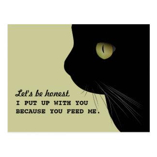 Grappige Briefkaart van de Houding van katten het