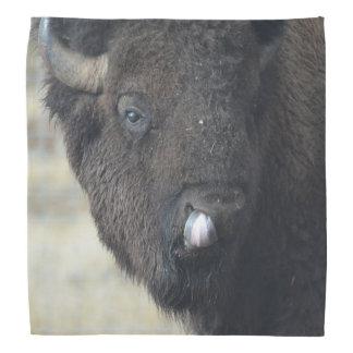 Grappige Buffels Bandana