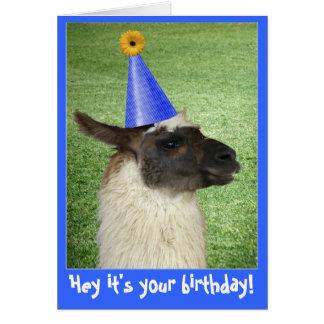 Grappige de verjaardagskaart of uitnodiging van de