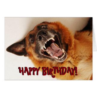 Grappige de verjaardagskaart van de Duitse herder Wenskaart