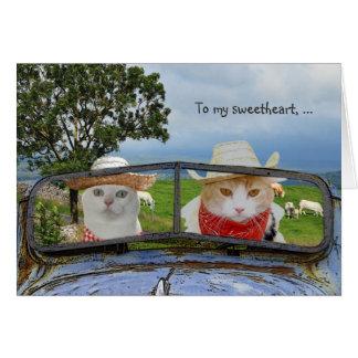 Grappige Kat Valentijn voor Liefje Briefkaarten 0